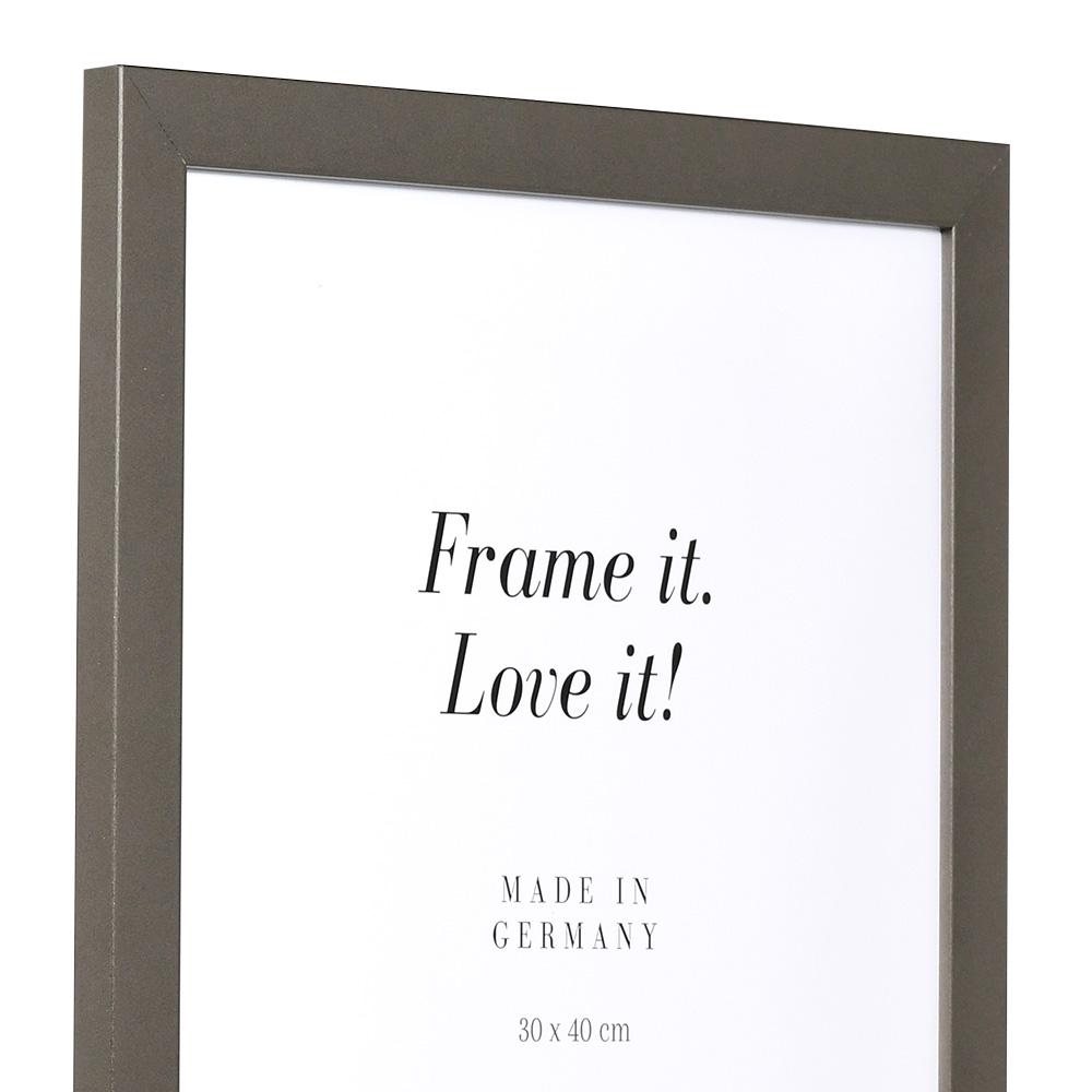 Träram Top Pro 50x60 cm | platina | standardt glas