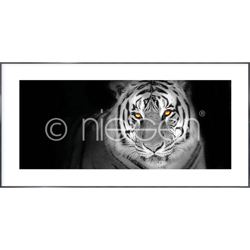 """Inramad bild """"Tiger"""" med aluminiumram Alpha"""