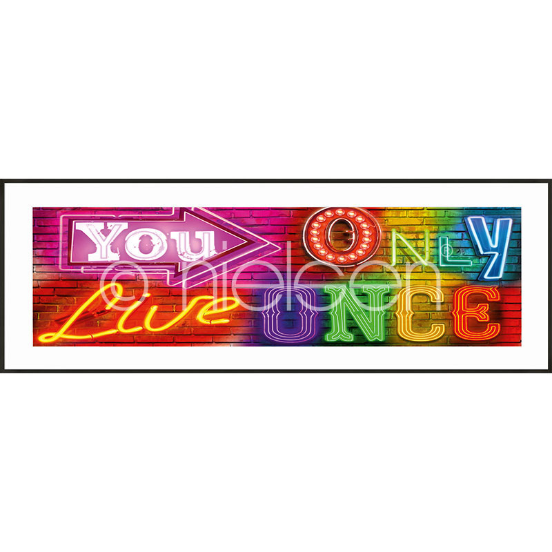 "Inramad bild ""you only live once"" med aluminiumram C2"