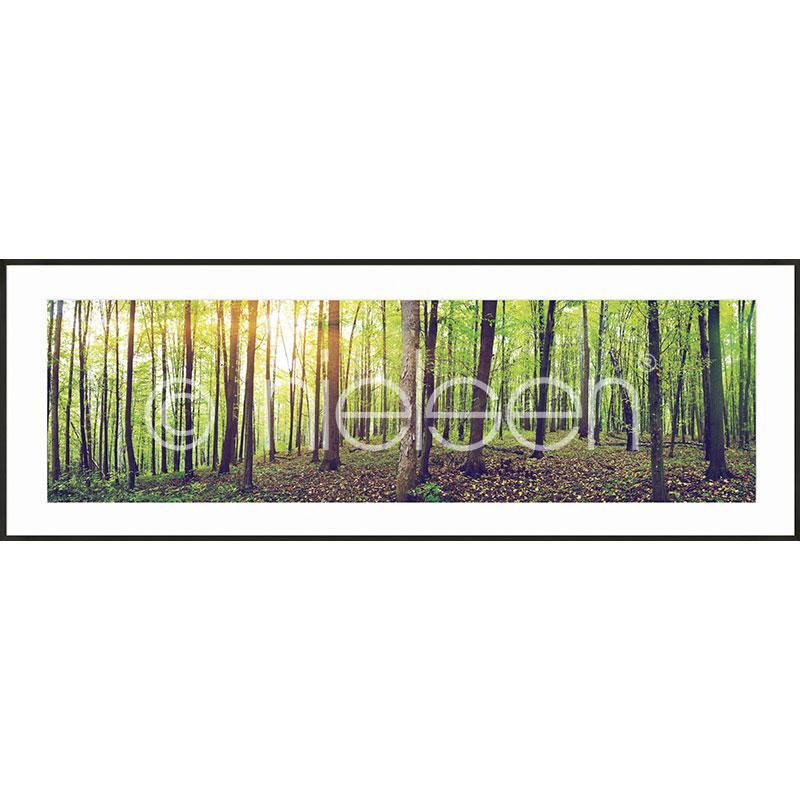 """Inramad bild """"Forest"""" med aluminiumram C2"""